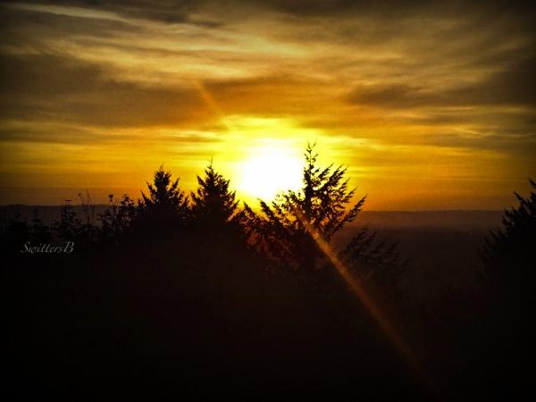 sunset rocky butte-Portland-SwittersB