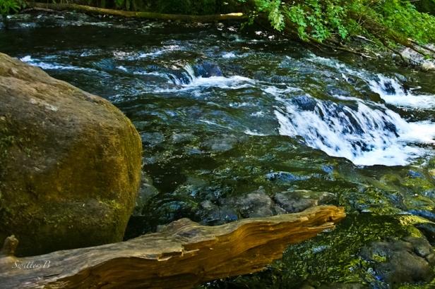 boulder, log, rapids-shade-SwittersB