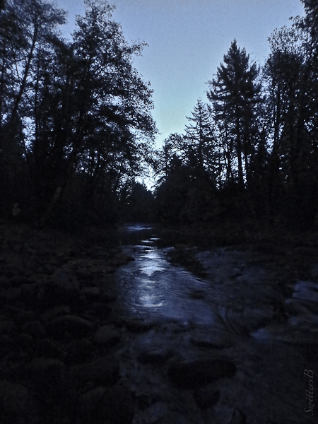 first light-river-Oregon-SwittersB