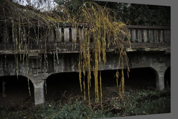 old bridge-willows-mccarthy creek-Oregon-SwittersB