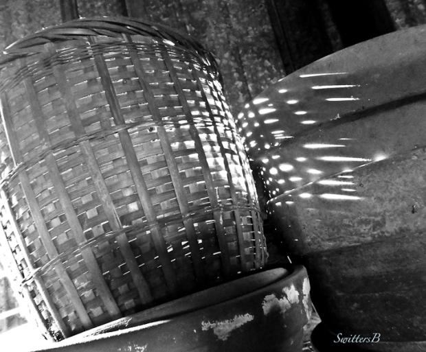 shed-sunlight-filtered-basket-pot-SwittersB