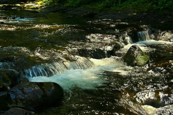 rapids-shade-stream-SwittersB