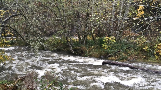 slick rock creek-Oregon-SwittersB
