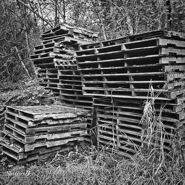 stacked-pallets-forgotten-SwittersB-2