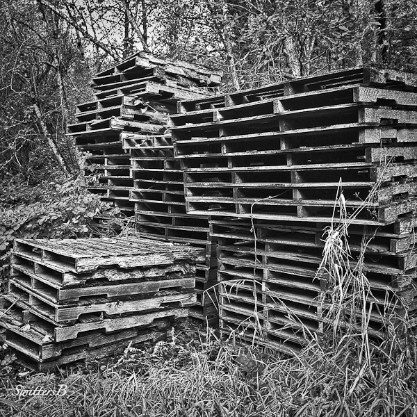 stacked-pallets-forgotten-SwittersB-2