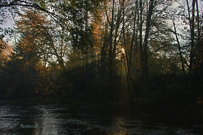 sun-smoke-rays-river-morning-SwittersB