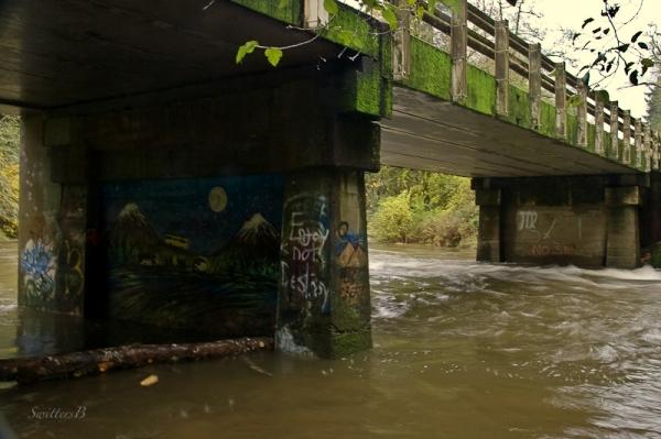 under bridge-river-Salmon River-SwittersB