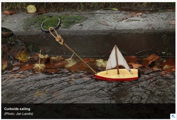 horse ring-tethered boat-by Jan Landis-KGW