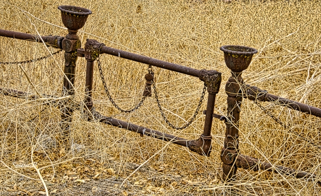 old cemetery gate-Central Oregon-brambles-SwittersB