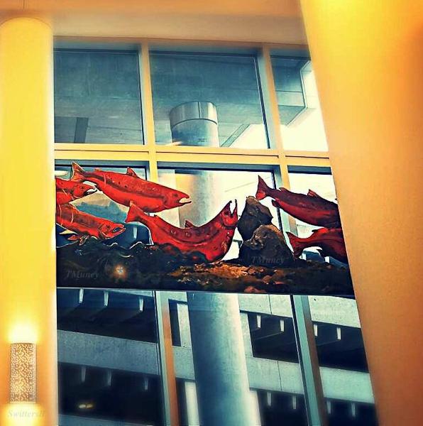 salmon-hospital-Doernbecher-TMuncy-SwittersB