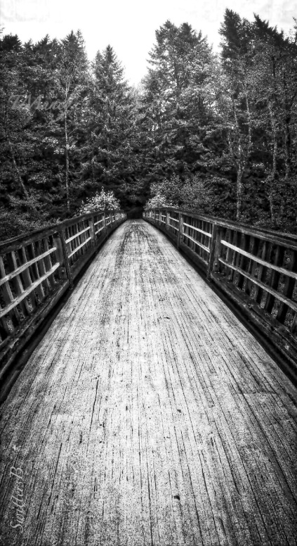 wooden-foot bridge-Mt. Hood-Oregon-SwittersB.jpg