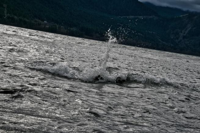 2-columbia river-rocks-spray-SwittersB