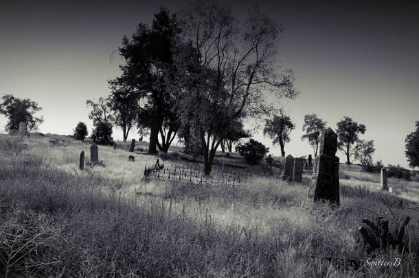 cemetery-oregon-hillside-SwittersB