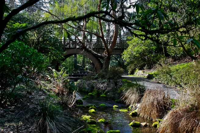 garden path-bridge-stream-SwittersB