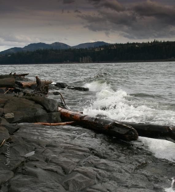 Gorge-waves-Columbia R.-shoreline-Washington-SwittersB