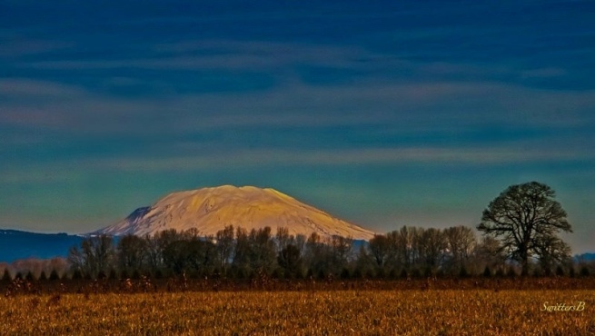 Mt. St Helens-Sauvie Island-Oregon-SwittersB