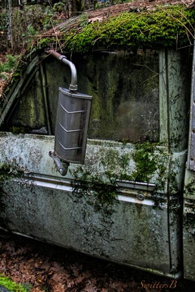 old truck-Datsun-moss-SwittersB