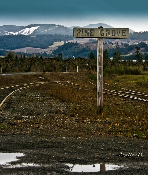 Pine Grove sign-railroad-SwittersB