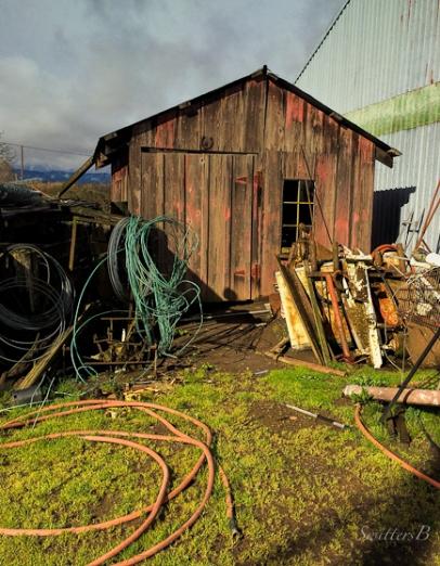 coils-stuff-farm-rural-SwittersB