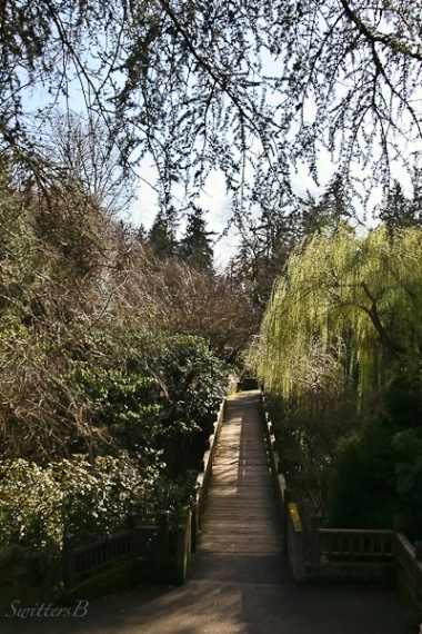 footbridge-gardens-willow tree-SwittersB