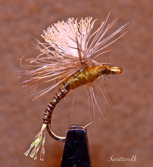 Parachute-Emerger-Mayfly-Fly Pattern-SwittersB