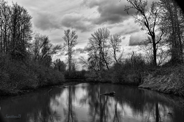 pond-dusk-Sauvie Island-SwittersB