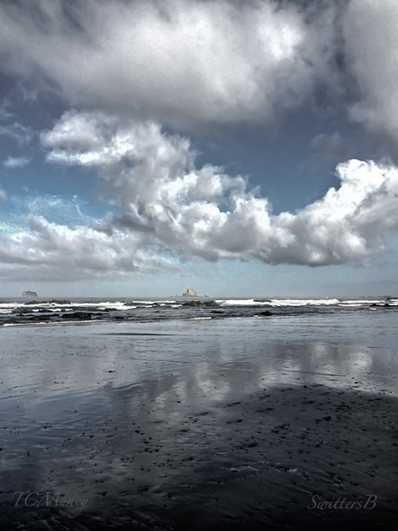 Washington Coast-TCMuncy-SwittersBjpg