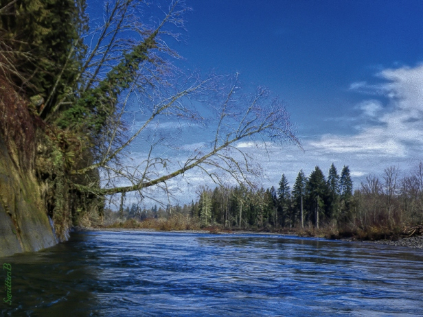 River-Sweeper-Clackamas-Oregon-SwittersB