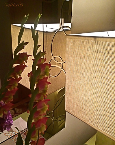 lamp-glads-entry-SwittersB