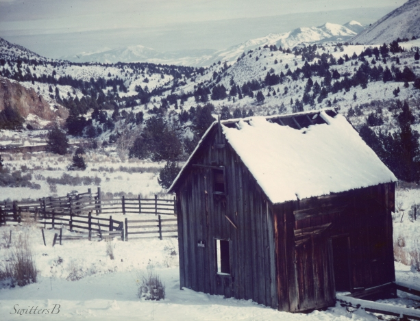 old cabin-oregon-ochoco-Muncy