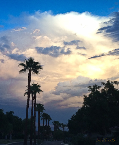 Palms-rain clouds-desert-SwittersB