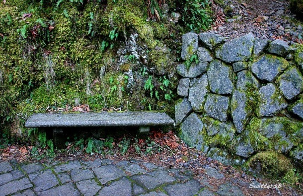 a trailhead-bench-oneonta gorge-SwittersB