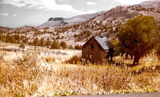 old cabin-ochocos-corral-SwittersB