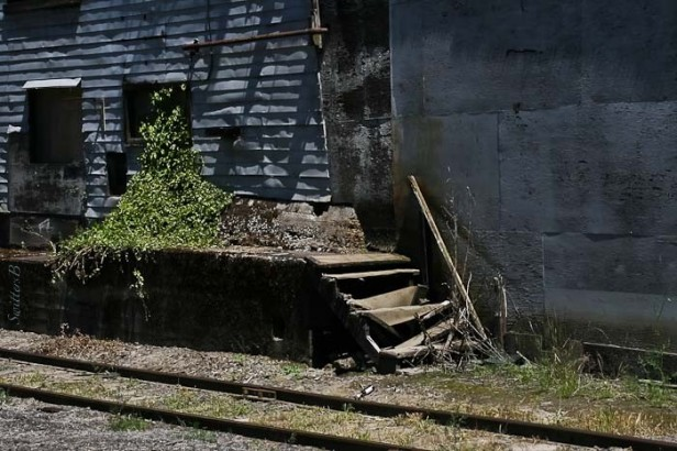 old stairs-rail siding-SwittersB