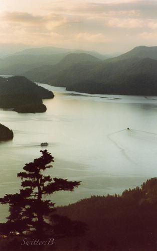Sitka-boat-wake-SwittersB-Alaska