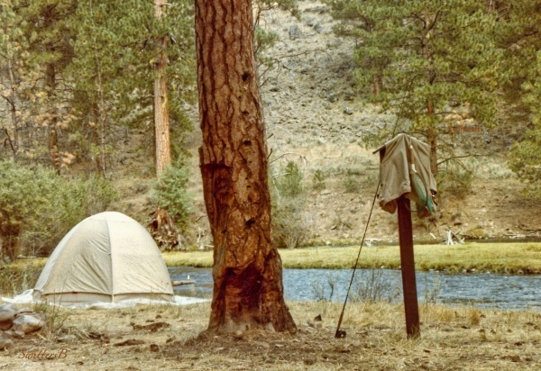 Camp-S. Fk Malheur R.-flyfishing-SwittersB