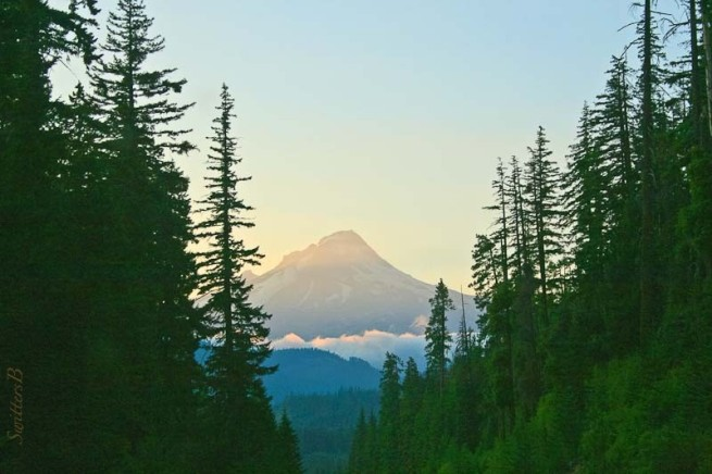 Mt. Hood-Hwy 26-Oregon-SwittersB