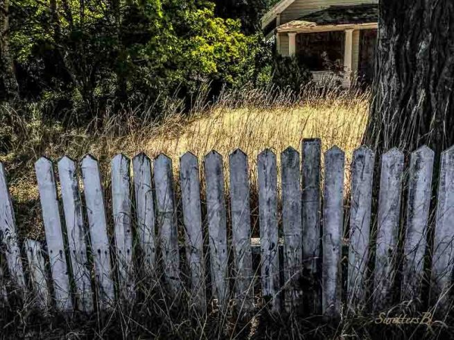 old fence-tall grass-SwittersB