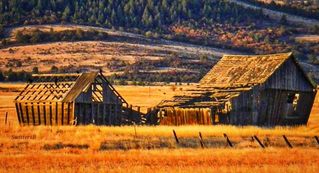 wapinitia hwy-216-old barn-SwittersB