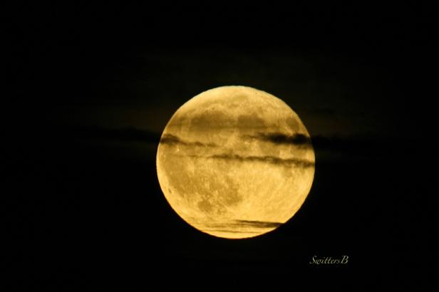 full-moon-cloud-strip-sept-2016-swittersb