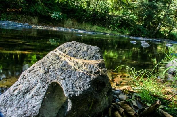 oregon-boulder-high-water-mark-river-swittersb-2