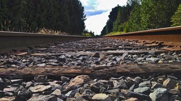 rr-tracks-oregon-swittersb-horizon
