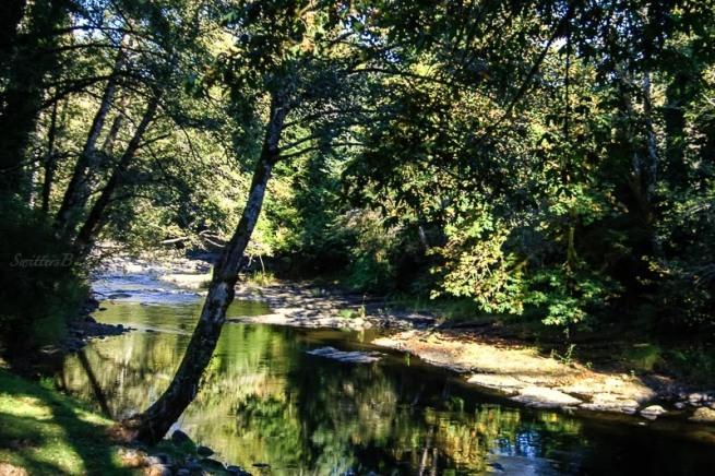 shadows-river-shade-swittersb
