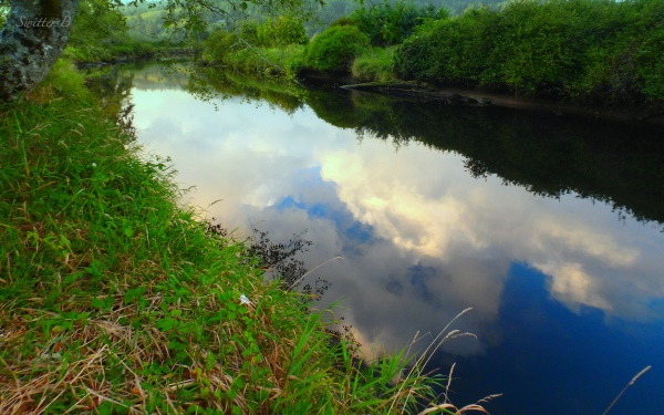 water-reflections-river-Oregon-SwittersB