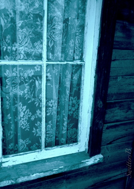 old-window-lace-privacy-swittersb