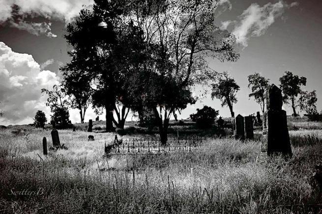 cemetery-dufur-ioof-swittersb