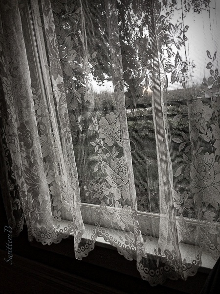 lace-curtains-farm-view-swittersb