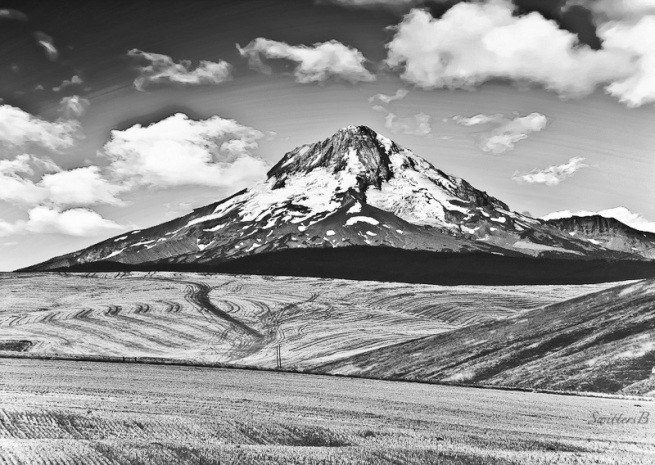 mt-hood-east-side-bw-swittersb