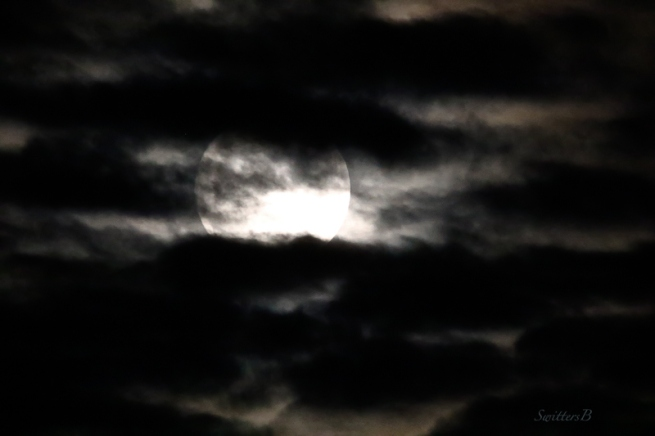 super-moon-clouds-111316-swittersb