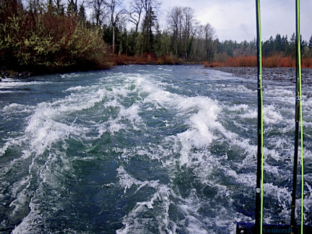 rapids-clackamas river-Oregon-swittersb